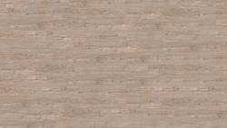 wood Go - Winter Pine / Winterfichte