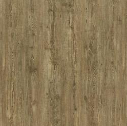 DecoLife - Tuscan Pine / Bergfichte