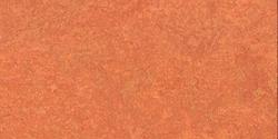 LinoPlus - Mandarin