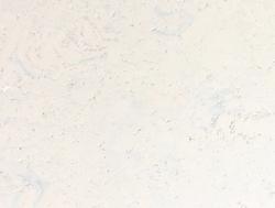 KorkPlus - Arriba perlweiß