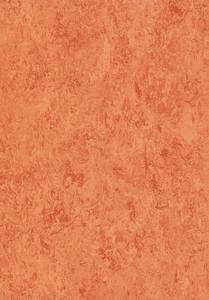 PicoLino - Mandarin
